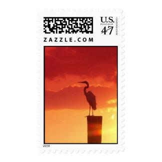 Contra un cielo rojo timbres postales