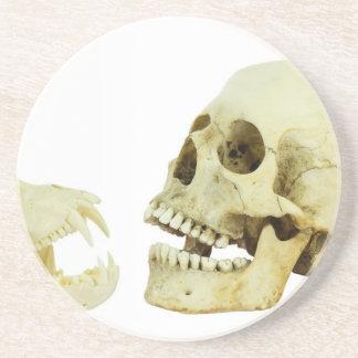 Contrario del cráneo del ser humano y del mono de posavasos diseño