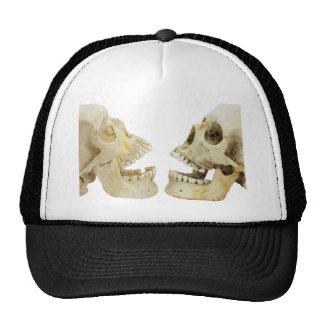 Contrario humano de dos cráneos de uno a gorras de camionero