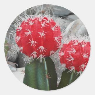 Contrast cactus classic round sticker
