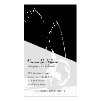 Contrast Fountain Business Card