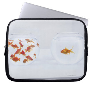Contrast of  many goldfish in fishbowl and computer sleeves