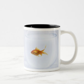 Contrast of  many goldfish in fishbowl and coffee mugs