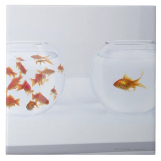 Contrast of  many goldfish in fishbowl and ceramic tiles