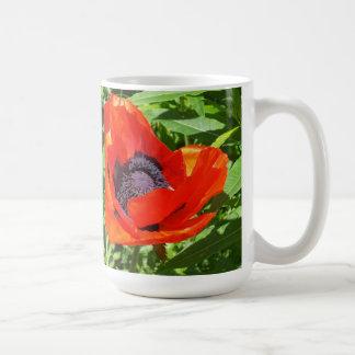 Contraste agradable tazas de café