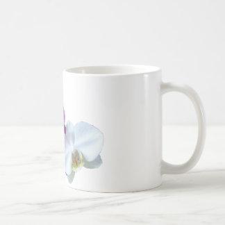 Contrastes de la orquídea taza básica blanca