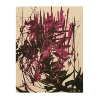 Contrived Cleome Wood Wall Art