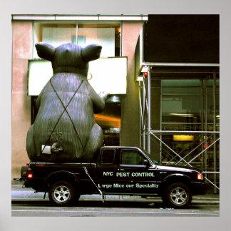 Control de parásito de NYC Póster