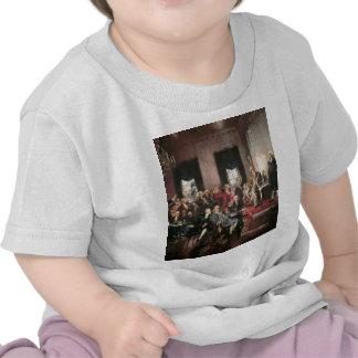 Convenio constitucional camisetas