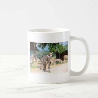 Convenio de la cebra taza de café