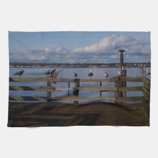 Convenio del ave marina toallas de mano