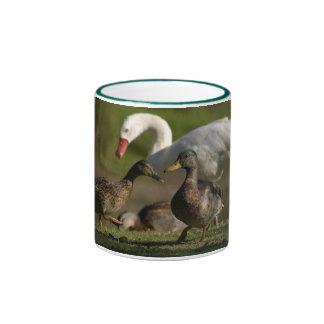 Convenio del pato tazas