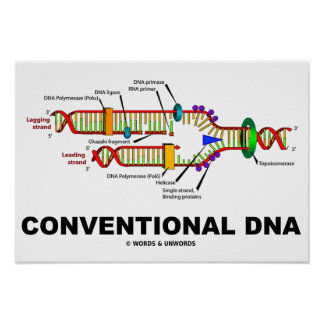 Conventional DNA Molecular Biology Humor Poster