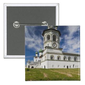 Convento de Nikola-Vyazhischi Pin