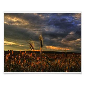 Conversación con el viento fotografías