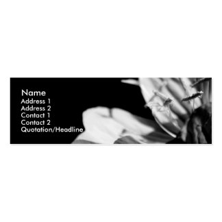 Conversation (3) mini business card