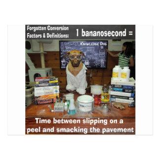Conversiones olvidadas perro Bananosecond del cono Tarjeta Postal