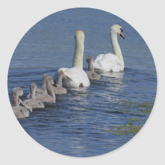 Convoy of Swans Sticker