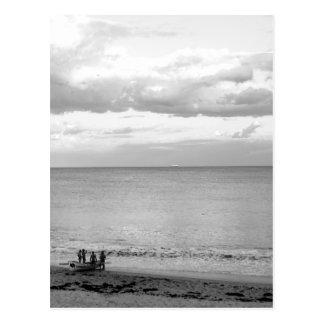 Coogee Beach Postcard