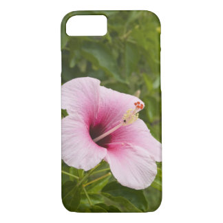 Cook Islands, Atiu. Hibiscus flower. iPhone 7 Case