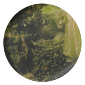 Cooked Broccoli Melamine Plate