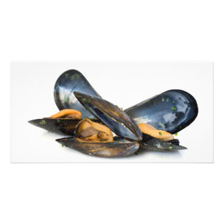 cooked mussels over white photo card