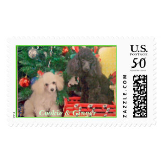 Cookie & Ginger Postage
