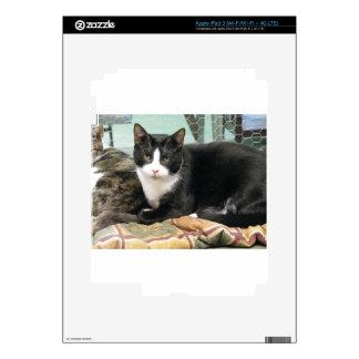 Cookie iPad 3 Skins