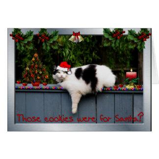 Cookie Loving Cat Card