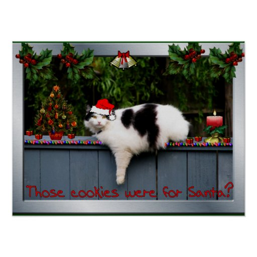 Cookie Loving Cat Poster