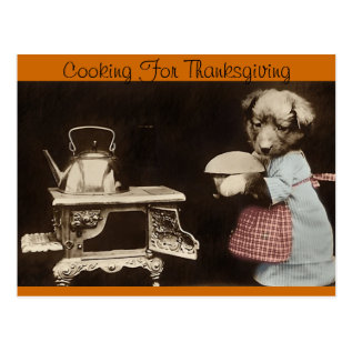 Cooking For Thanksgiving Postcard at Zazzle