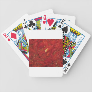 Cooking homemade tomato sauce bicycle playing cards