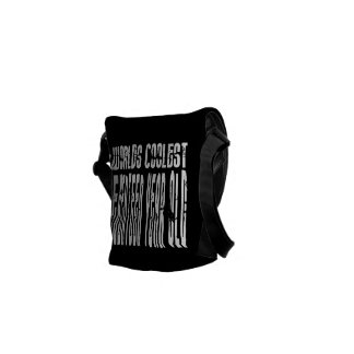Cool 17th Birthdays Worlds Coolest Seventeen Year Courier Bags