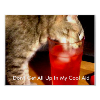 Cool Aid Kitty Poster