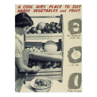 Cool Airy Place For Vegetables Postcard