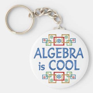 Cool Algebra Basic Round Button Keychain