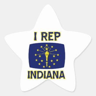 cool america state design star sticker