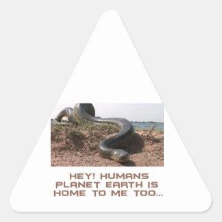 cool Anaconda designs Triangle Sticker