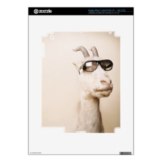 Cool animals in sunglasses. decal for iPad 3