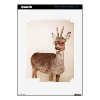 Cool animals in sunglasses. iPad 3 decals