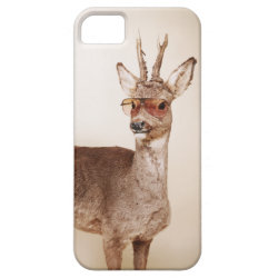 Cool animals in sunglasses. iPhone 5 covers