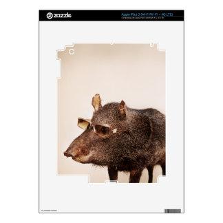 Cool animals in sunglasses. iPad 3 skin