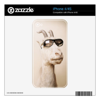Cool animals in sunglasses. skins for the iPhone 4S