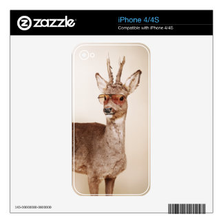 Cool animals in sunglasses. skin for iPhone 4
