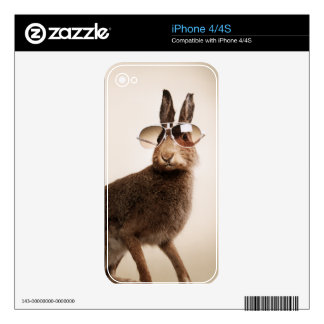 Cool animals in sunglasses. skin for the iPhone 4