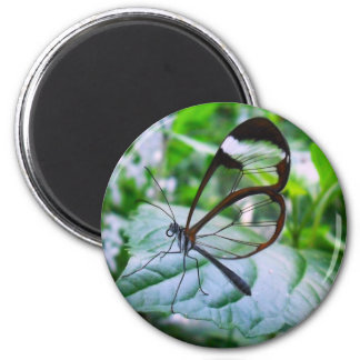 cool as glass 2 inch round magnet