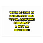 Cool Assistant Principal Is NOT an Oxymoron Post Card