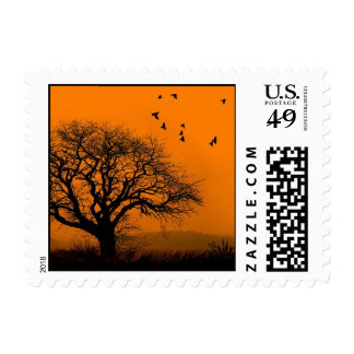 cool bats at sunset postage