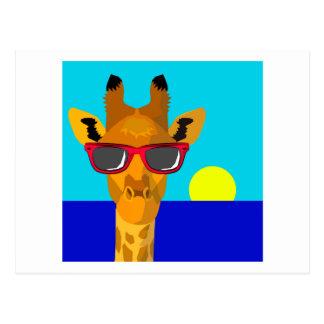 Cool Beach Giraffe Postcard