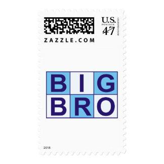 Cool Big Bro Shirt + More! Postage